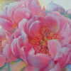 First-Peony-small